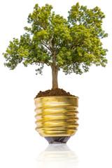 Concept énergie renouvelable