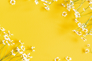 Flowers composition. Chamomile flowers on yellow background. Spring, summer concept. Flat lay, top...