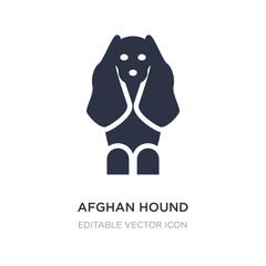 afghan hound icon on white background. Simple element illustration from Animals concept.