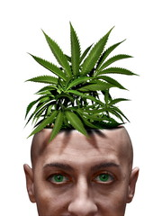 junkie with marijuana plant on head