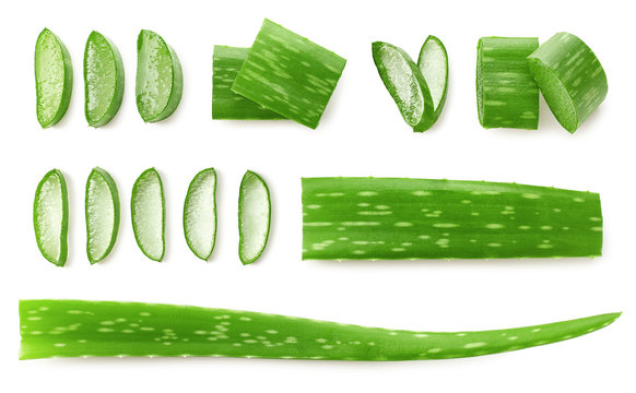Fresh sliced Aloe Vera leaf
