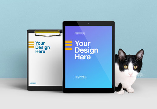 Cat With Tablet And Clipboard Mockup