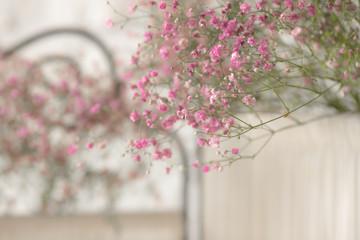 Gypsophila floral decoration