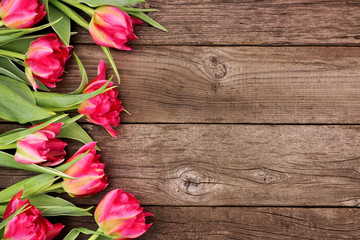 Side border of pink tulip flowers against a rustic dark wood background with copy space