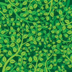 Tree branches and leaves, vector background design