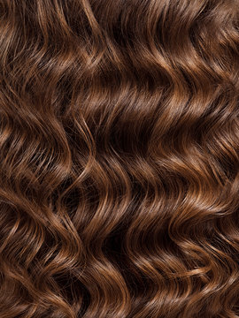 Girl with long, curly hair, rear view. Hair texture, close-up.