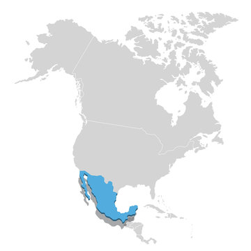 Vector illustration of Mexico in blue on the grey model of North America map