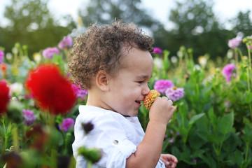 Toddler picking flower on flower field