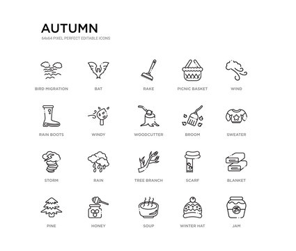 set of 20 line icons such as tree branch, rain, storm, broom, woodcutter, windy, rain boots, picnic basket, rake, bat. autumn outline thin icons collection. editable 64x64 stroke