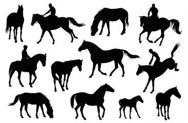 Horse silhouettes graphic vector illustration set