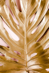 Wall Mural - Golden tropical palm leaf Monstera on pink background. Flat lay, top view minimal concept.