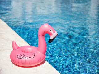 Garden Poster Flamingo Inflatable toy of pink flamingo near swimming pool at poolside