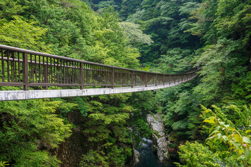 奈良県・御手洗渓谷