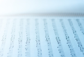 Music sheets on white background. Sheets with musical notes