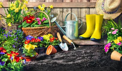 Planting flowers in sunny garden.
