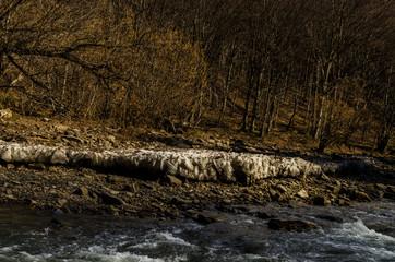 lód na brzegu rzeki