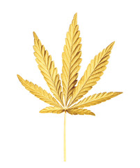 Cannabis leaf isolated on white. Hemp leaf close up. Marijuana drugs is produced from Cannabis leaf.