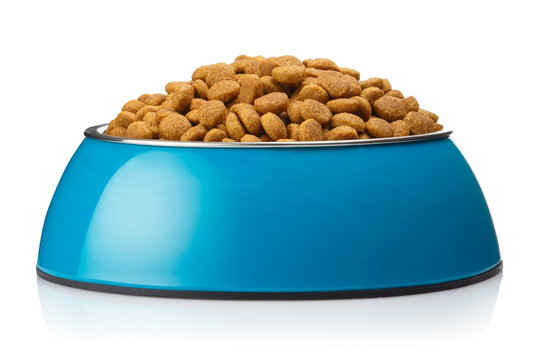 Dry cat food in a blue bowl, isolated on white background