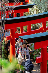 People take pictures under faux torii gates during the Sakura Matsuri Floral Display at Gardens by the Bay in Singapore