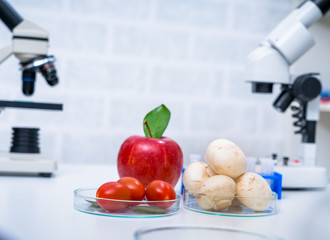 Chemical Laboratory of the Food supply . GMO Genetically modified food in lab