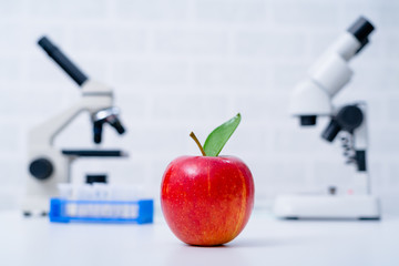 Chemical Laboratory of the Food supply . GMO Genetically modified food in lab,
