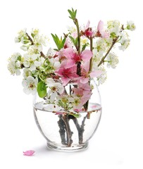 Spring flowers blooming in glass vase isolated on white, pears, apples and peach with clipping path