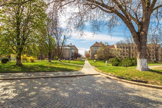 urban scenery in springtime. beautiful park with paved walkways. location narodna square, uzhgorod, ukraine.