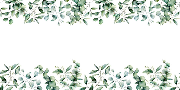 Watercolor eucalyptus seamless border. Hand painted eucalyptus branch and leaves isolated on white background. Floral illustration for design, print, fabric or background.