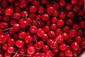 sweet cherries  Wall mural