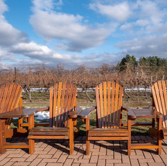 empty wooden chairs at vineyard
