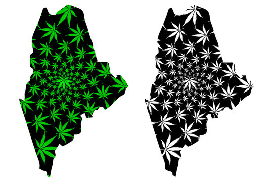 Maine (United States of America, USA, U.S., US) -  map is designed cannabis leaf green and black, State of Maine map made of marijuana (marihuana,THC) foliage,
