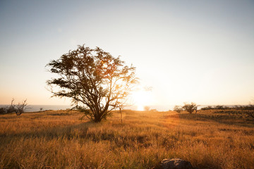 A sunset is view from Highway 270 on the Big Island of Hawaii. Fotobehang