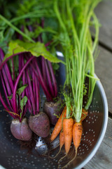 Still life of carrots and beets in a colander.