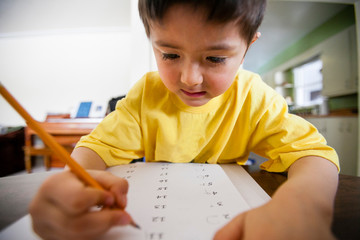 Close-up of boy doing homework