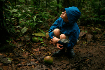 Young boy looking up at tree in Amazon Rainforest