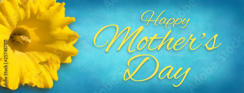 Daffodil Background - Happy Mother's Day