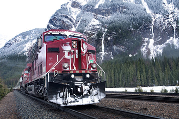 Freight train passing by forest against snowcapped mountains