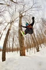 Snowboarder jibbing tree