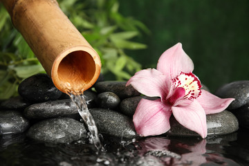 Traditional bamboo fountain with zen stones and flower