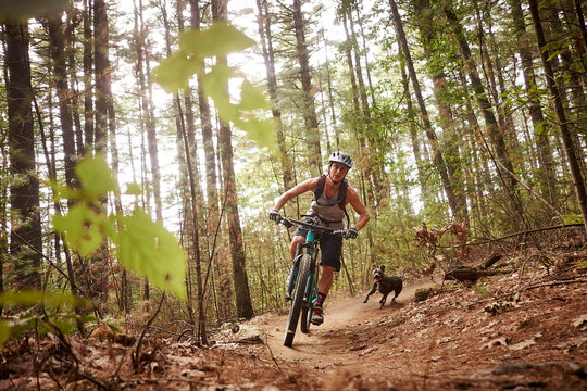 A woman and her dog mountain biking at the Russell Mill trail network in Massachusetts.