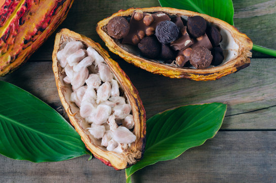 Cob of cocoa and pieces of chocolate on wooden background.
