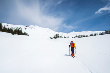 Man cross country skiing towards Mt Shasta, California, USA