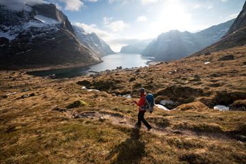 Woman hiking in fjords, Lofoten Islands, Norway