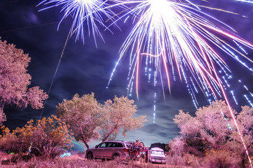 Firework display in sky at night, Zion National Park, Utah, USA