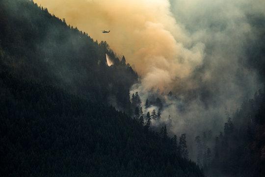 Massive smoke cloud rising from large wildfire on mountain, Stevenson, Washington State, USA