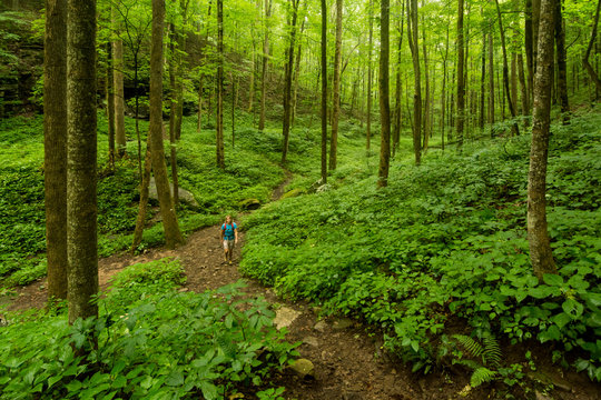 A woman hiking in Virgin Falls State Natural Area, Sparta, Tennessee.