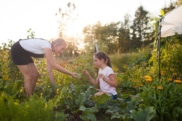 Mother and daughter harvesting vegetables in garden