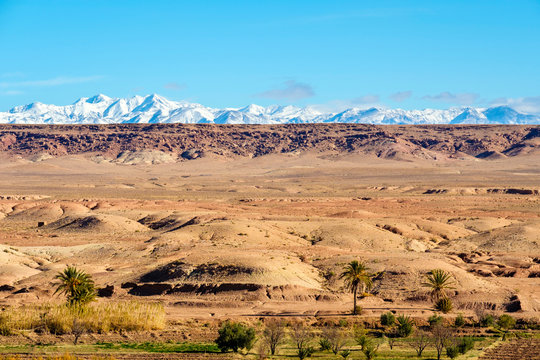View of snowcapped Atlas Mountains across dry desert landscape, Souss-Massa, Morocco