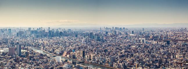 Aerial view panorama of Tokyo, Japan