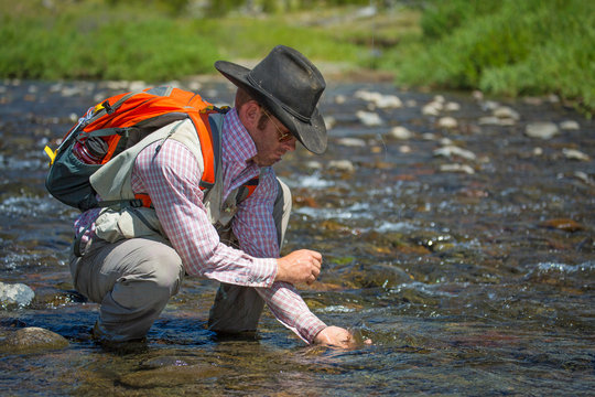 A man releases a Yellowstone cutthroat trout while fly fishing in cowboy hat.